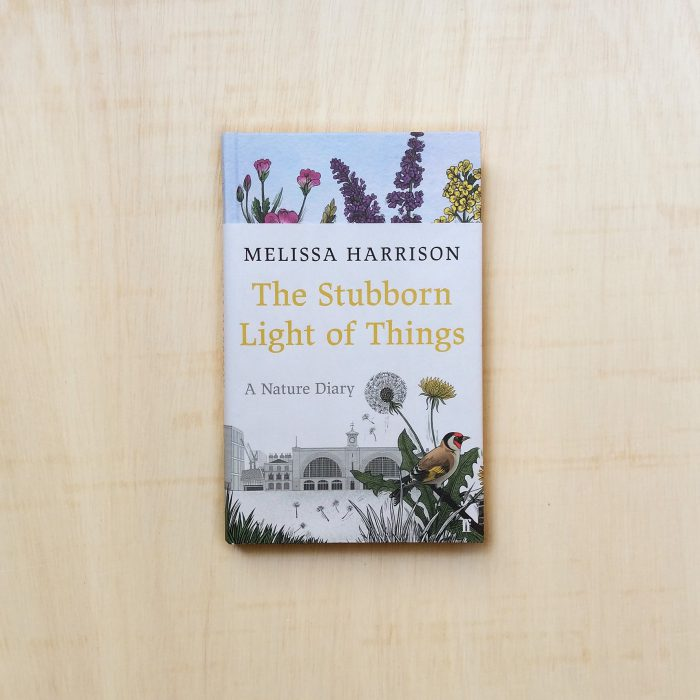 zabriskie_melissa harrison_ the stubborn light of things